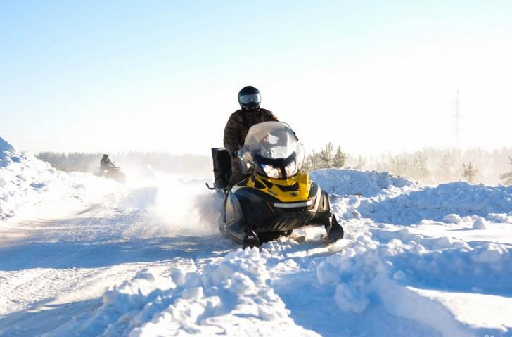 NEWS2 Tundra wt (2) (1)
