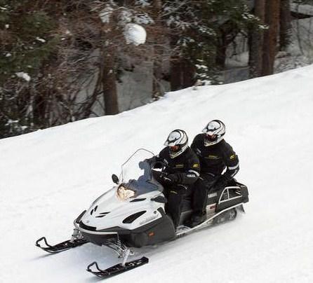 Снегоход Ямаха RS Viking Professional